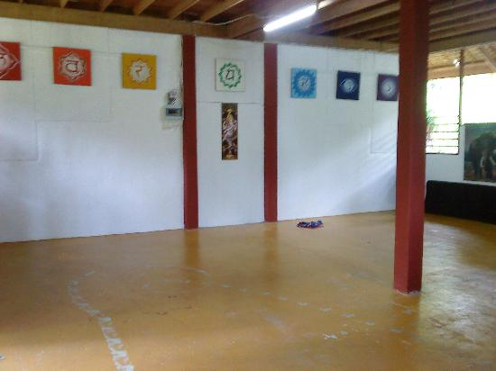 The Yoga Studio: inside the studio