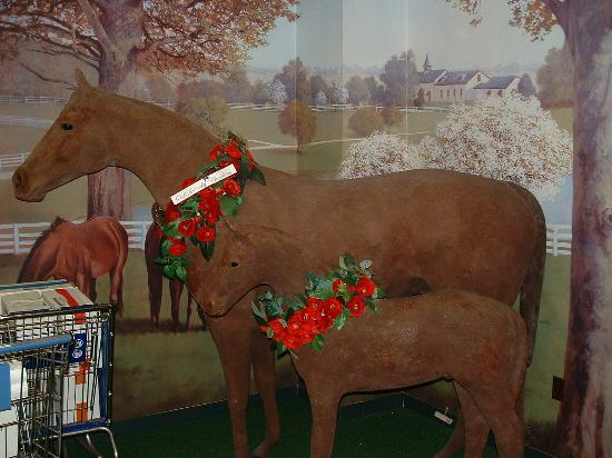 Old Kentucky Chocolates: They sure love thier horses in Ky
