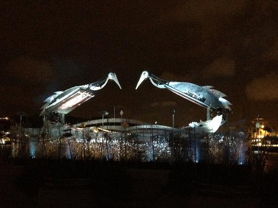 Crane Dance at Resort World Sentosa: Crane waking up