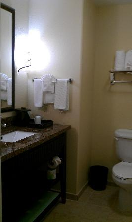 bathroom picture of la quinta inn suites dfw airport west