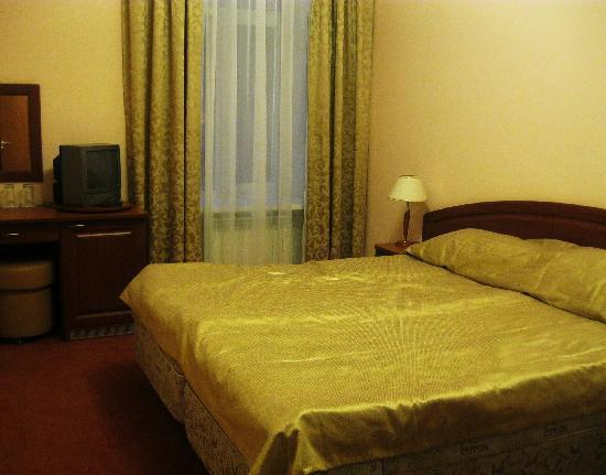 Comfitel Demidov Bridge Hotel: room