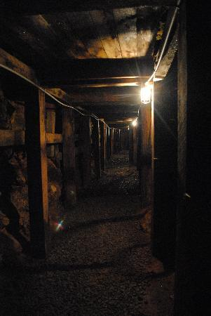 Reed Gold Mine State Historic Site: In the mine