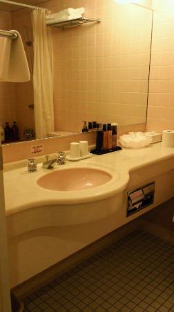 Asahikawa Park Hotel: バスルーム