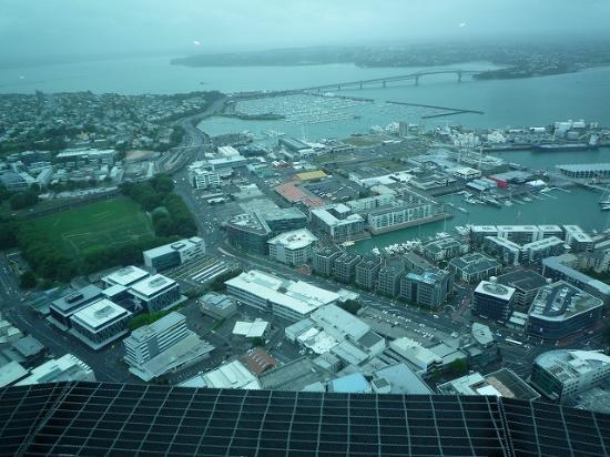 Pont du port d'Auckland : スカイタワーから見た橋です。