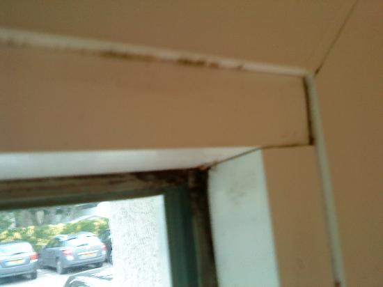 Ibis Quiberon Thalassa : Moisissures Fenêtre