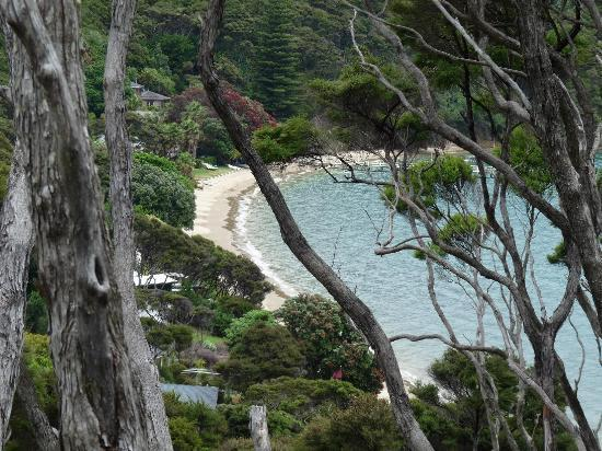 Kawau Lodge: We discovered this beautiful bay on a walk