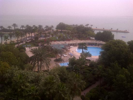 Sheraton Grand Doha Resort & Convention Hotel : Swimming Pool