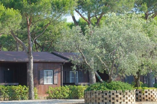 Orbetello Camping Village: Bunlalow Marina