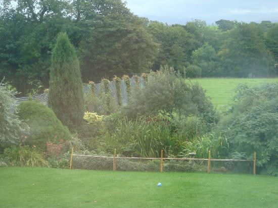 Wern Farm: View from bedroom