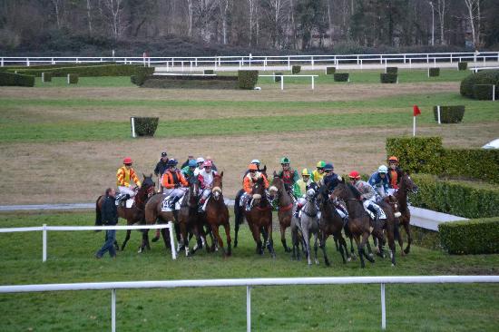 Hippodrome de Pau : la course d'obstacles