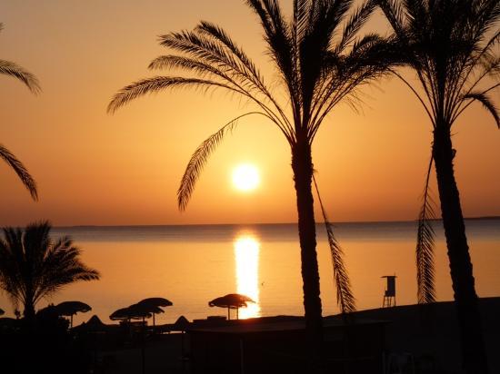 Gorgonia Beach Resort: La plage et son levé de soleil.