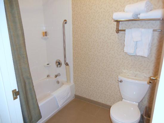 Granzella's Inn: Good news - grab bar in shower.  Bad news - door barely cleared small, round commode.