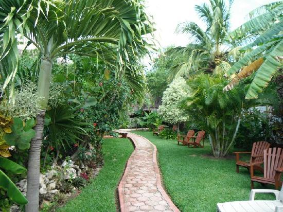 Hotel Casa Barbara: verde
