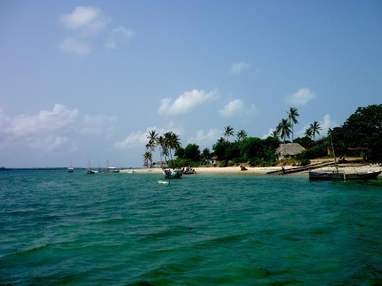 Didimiza Beach Guest House: Turquoise water around Mafia