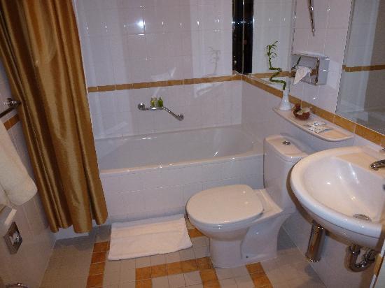 Ramada Hotel & Suites Vilnius: Bathroom