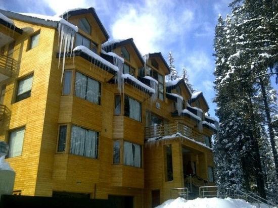 Hotel Pine Spring: Hotel Pinespring Gulmarg....