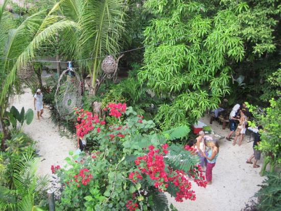 El Jardín de Frida: Saturday afternoon organic market in the garden