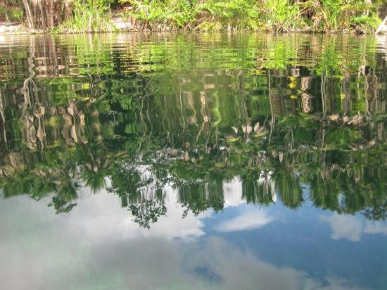 El Jardín de Frida: Nearby Cenote Cristal, a pure and magical place to relax