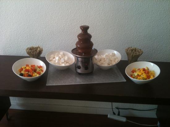 Hotel Novotel Le Mans : A notre arriver une jolie fontaine a chocolat pour nous accueillir bravo merci encore a toute l