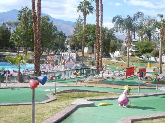 Boomers! Palm Springs
