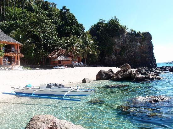 Coco Grove Beach Resort : Apo Island - a paradise !
