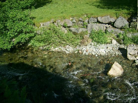 Limefitt Holiday Park: Troutbeck