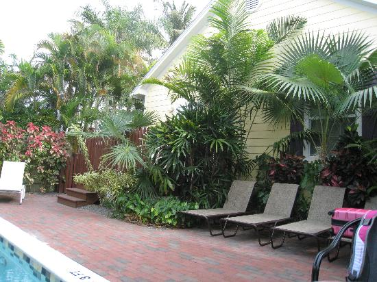 Travelers Palm Inn: View towards the Deck