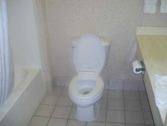 Clarion Suites at the Alliant Energy Center: bathroom
