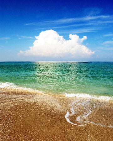 Caspersen Beach: Morning Thunder