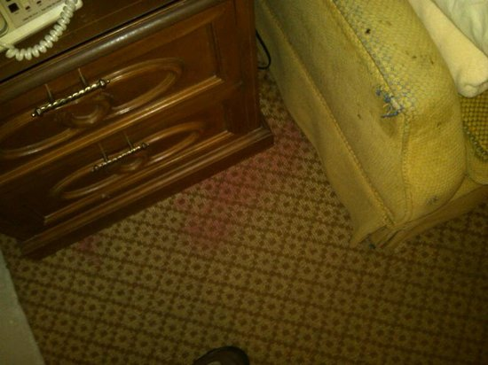 Golden Green Hotel:                                                       Stained floor and rotting couch