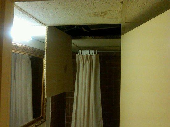 Golden Green Hotel:                                                       Bathroom ceiling 2