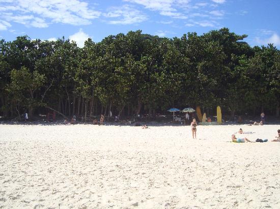 Lopes Mendes Beach: Vista areia