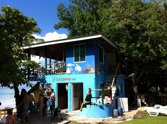 Zdjęcie Providencia Island