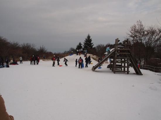 Chihayaakasaka-mura, Япония: 山頂公園