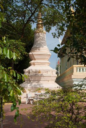 Temple of the Lotus Blossoms: Amazing sights at Wat Botum