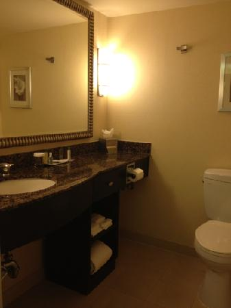 DoubleTree by Hilton Orange County Airport: Standard bathroom