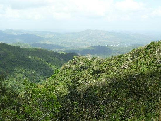 Altos De Campana National Park: The lovely lush green mountainside