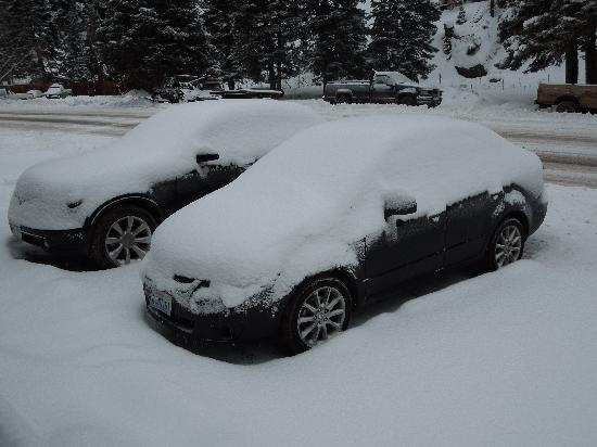 Timber Ridge Lodge: Lots of new snow!