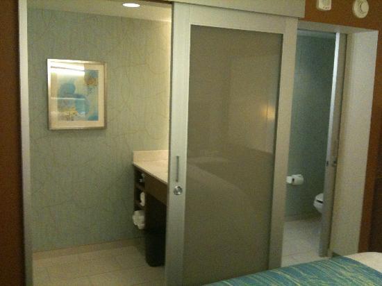 SpringHill Suites Las Vegas Convention Center: Bathroom
