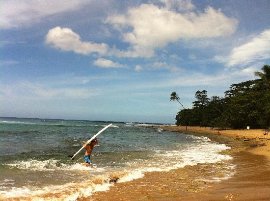 Casa Verde Hotel: Surf's up!