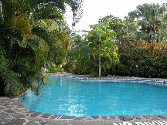 East Winds Inn : Crystal Clear Pool With Swim-Up Bar