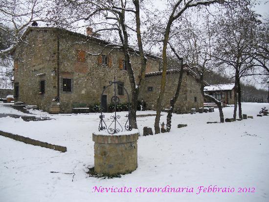 Agriturismo Podere Casa Nova: Nevicata Febbraio 2012