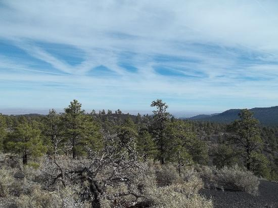 Flagstaff, AZ: Sunset Crater area, Dec 05 2010 - Juha J.