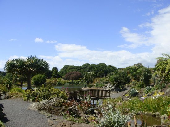 Auckland, New Zealand: Beautiful Garden