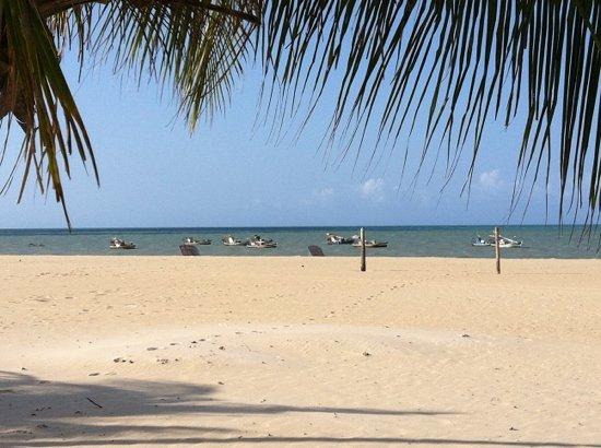 Sao Miguel do Gostoso, RN: Praia de Maceió - S. M. do Gostoso