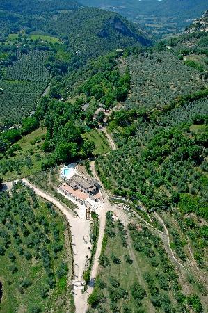 Pucci Country House: Si può camminare lungo i percorsi in mezzo agli ulivi
