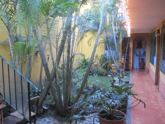 Posada Juma Ocag: Inside Hotel - Tiny but pretty garden