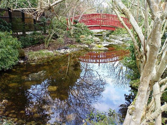 Du Côté de Rueil : Le jardin japonais de Rueil