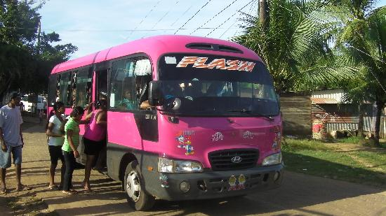 Martha's Bed and Breakfast: The local bus is also a great way to get around, and meet the locals