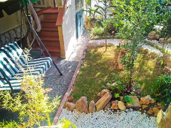 Ladybird - La Coccinella : Garden